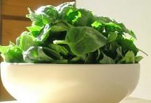 Спанаќ – крал на зеленчукот и чувар на здравјето