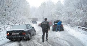 skrsenici na sneg