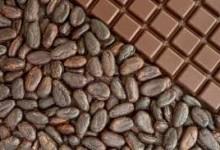Какаото дава енергија!